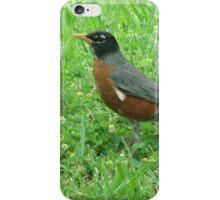 Robin Escorting Springtime  iPhone Case/Skin