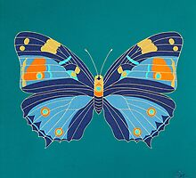 Turquoise Emperor by Trudi Hipworth