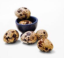 Quail eggs by Chris Leyland