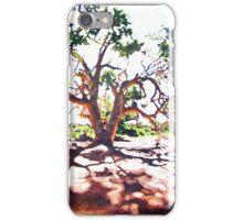 Silverton Gum iPhone Case/Skin