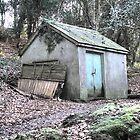 Woodland shed at Perran-ar-worthal by Chris Leyland