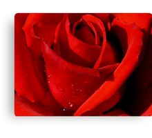RUBY RED JEWEL Canvas Print