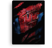 Spider Ripped Man Chest Canvas Print