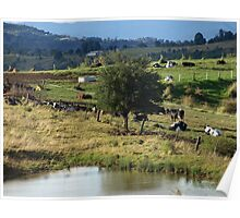 COUNTRY VIEWS Poster