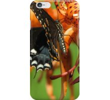 Dance Of Swallowtail and Tiger Lily iPhone Case/Skin