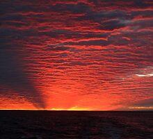 Sunset over Dirk Hartog Island by Christina Backus