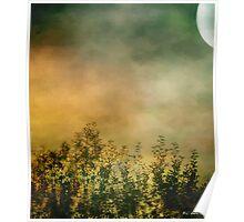 Haze on Moonlit Meadow Poster