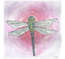Blue and Green Dragonfly on Pink Background Poster