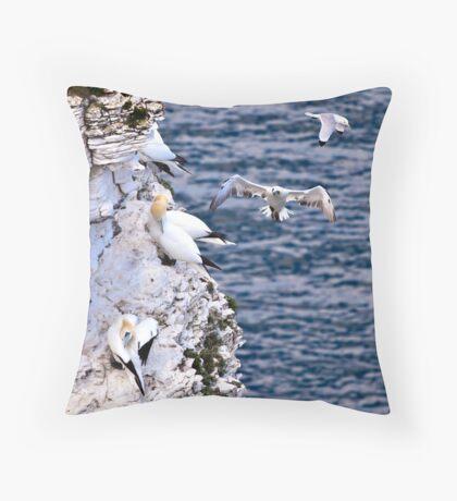 Bempton Gannets Throw Pillow