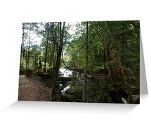 Rainforest 9 Greeting Card