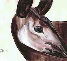 Okapi by Dawn B Davies-McIninch