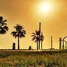 sunshine ... by Tarek Solh