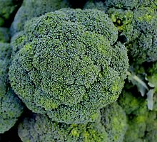 Broccoli by Renee D. Miranda
