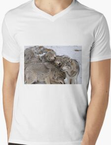 Playful Wolf Pack Mens V-Neck T-Shirt