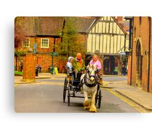 One Horse Power - York Metal Print