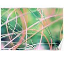 Blowing in the wind - abstract 5 Poster