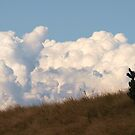 Just a bit of Fluff on the horizon, via Mt Barney by Virginia McGowan