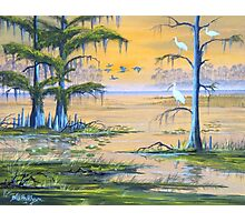 Ibis At The Everglades - Misty Sunrise Photographic Print