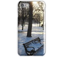 A Wintry Bench at Niagara Falls iPhone Case/Skin