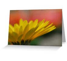 Yellow Sunshine (gerber daisy)  Greeting Card