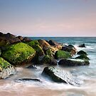 Moss on the rocks - Keyhaven by Kathy White