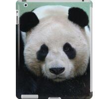 Sleepy Panda iPad Case/Skin