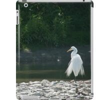 Finely Feathered iPad Case/Skin
