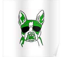Boston Terrier with Sunglasses Poster