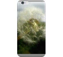 Dandelion Clock on a spring day iPhone Case/Skin