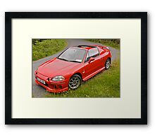 Red colour of roses Framed Print