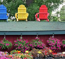 Chairs and Flowers by Lucinda Walter