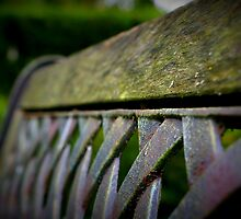 Bench by rokudan