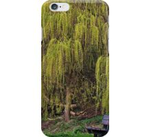 Wind in the Willows iPhone Case/Skin