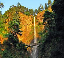 Multnomuth Falls, at the end of the day..Oregon by trueblvr