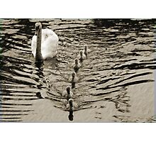 ... IN A ROW Photographic Print
