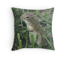 My Other Friend Throw Pillow