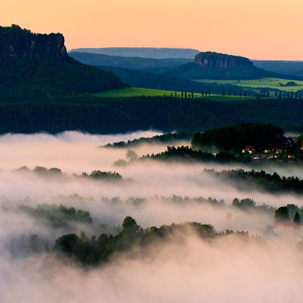 Morning Fog by Matthias Haker