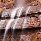 Waterfall in Zion National Park by cavaroc
