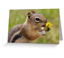Dandelion Delight Greeting Card