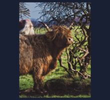 Highland Cattle and a gnarled tree Kids Tee