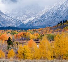 Fall Colors at Oxbow Bend by cavaroc