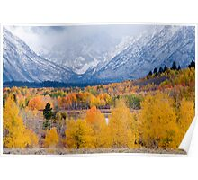 Fall Colors at Oxbow Bend Poster