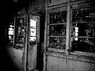 The Lunatics Have Taken Over The Asylum ~ Harperbury by Josephine Pugh