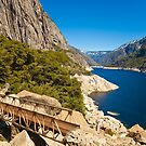 Bridge at Hetch Hetchy by Nickolay Stanev