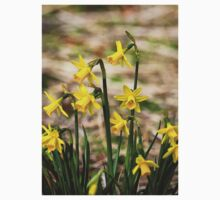 Clump of golden daffodils Kids Clothes