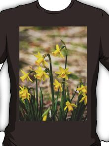 Clump of golden daffodils T-Shirt