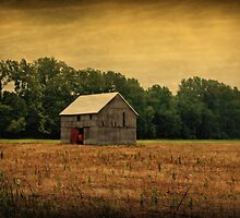 Old Barn by Sandy Keeton