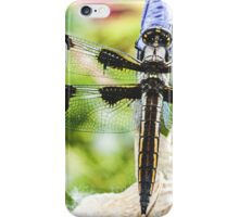 Large Spring Dragon Fly iPhone Case/Skin
