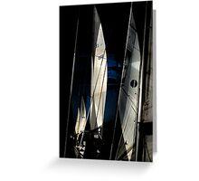 Sail Equation..  Greeting Card