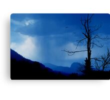 Shadows in the rain Canvas Print